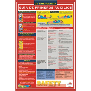 image about Printable First Aid Guides identify Very first Assistance Specialist Poster Spanish To start with Support Process within the