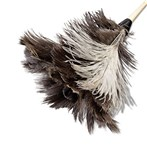 Ostrich-Feather  Duster