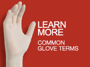 GLOVE_TERMS